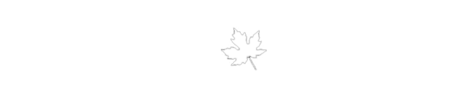 Working Holiday Kanada logo - white3